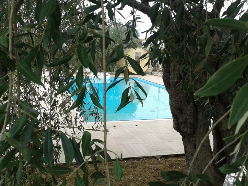 Holiday apartment Potos Residence   Studio (982849), Potos, Thassos, Aegean Islands, Greece, picture 12